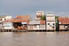 Hus på den Meekong deltan Vietnam Arkivfoto