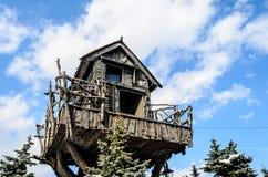 Hus på det stora trädet i vinter Arkivfoto