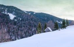 Hus på en backe som täckas med snö- och gräsplanträd på siden Royaltyfri Bild