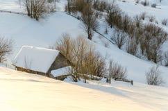 Hus på en backe som täckas med snö- och gräsplanträd på siden Fotografering för Bildbyråer