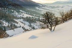 Hus på en backe som täckas med snö- och gräsplanträd på siden Arkivfoto