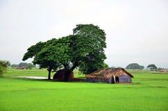 Hus på risfältfältet som lokaliseras i Bago, Myanmar Fotografering för Bildbyråer