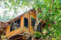 Hus på trädet i phiphiön Det är hotellet Arkivfoton