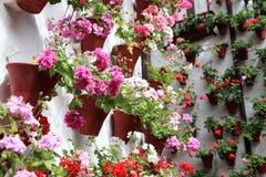 Hus som dekoreras med blomkrukor Arkivfoto