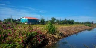 hus som skiner liten sunvinter Fotografering för Bildbyråer