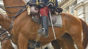Husar kawalerii strażnicy zbiory