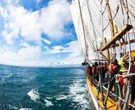 HUSAVIK,冰岛- 2013年6月19日:观看在traditiona的鲸鱼 库存图片