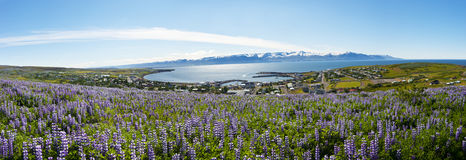 Husavik Royalty Free Stock Photos
