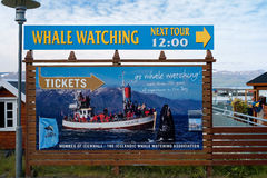 Husavik, Iceland - July, 2008: Whale watching ad. Icelanders have turned old whaling boats into whale watching boats for tourists stock photos