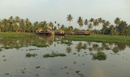 Husbåtar Kumarakom, Kerala, Indien Royaltyfri Foto