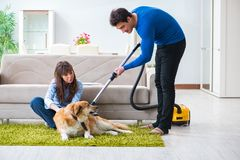 The husband cleaning house from dog fur royalty free stock image