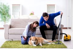 The husband cleaning house from dog fur stock photos