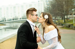 Husband and groom gaze at him. On nature Royalty Free Stock Images