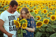 husband and his pregnant wife with sunflowers Stock Image