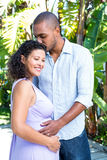Husband kissing pregnant wife head Stock Image