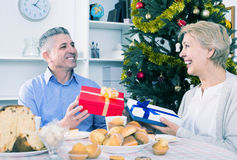 Husband and wife exchange holiday gifts for Christmas and New Ye. American husband and happy wife exchange holiday gifts for Christmas and New Year stock image