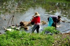 Pengzhou, China: Farmers Washing Garlic in River Stock Photos