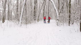 Husband and wife are pulling two sledges with their children. stock footage