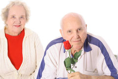 Husband and wife with a rose Stock Image