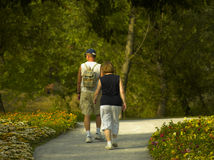 Husband And Wife Walking. Down the path in the flowers, park scene Stock Photography