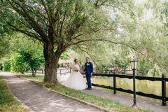 The husband and wife in wedding clothes are posing under an old broad tree with heavy branches. The newlyweds are just. Getting married walking in the park and stock photos