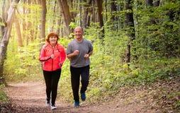 Husbanf和妻子佩带的运动服和赛跑在森林里 库存图片
