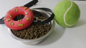 Husdjur är vänbegreppet Husdjurbunken och gummi leker med repet för hund eller katt på vit bakgrund arkivbilder