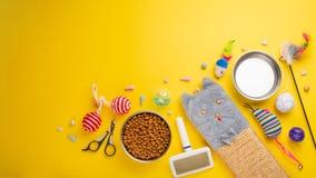 Husdjur, katt, mat och tillbehör av bosatt plant lekmanna- för katt, med utrymme för design, på en gul bakgrund Baner kattbakgrun royaltyfri foto