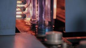 HUSDJURpreforms flyttar sig p? uppv?rmningugnslinje i snabb hastighet Plast- buteljerar produktion stock video