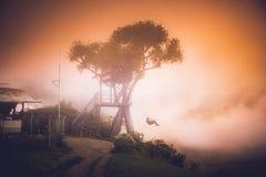 Huset i trädet i Baños, Ecuador Arkivfoton