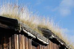 Huset med gräs taklägger Royaltyfri Foto