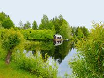 Huset och bron till sjön mellan träden arkivbilder