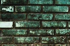 Huset som gjorde staketet från tegelstenväggen till mossa Gör mer framstående än andra hus i byn Royaltyfri Fotografi