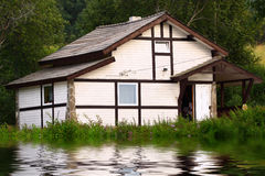 husflod Arkivfoton