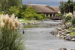 husflod Fotografering för Bildbyråer