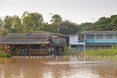 Husflod i Thailand Royaltyfria Foton