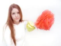 hushållsarbete 5 fotografering för bildbyråer