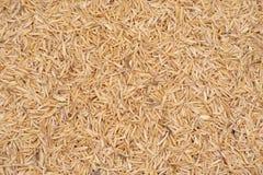 Husk do arroz Fotografia de Stock Royalty Free