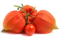 Husk Tomatoes Or Physalis With Leaf Isolated On White Background Stock Photography