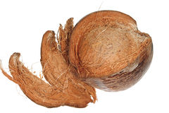 Husked Ripe Coconut Stock Image