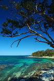 Huskisson beach at Jervis bay. The whitiest sands, clear water. Holiday resort stock photos