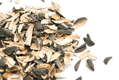 Husks of sunflower seeds on white. Background closeup Stock Photos