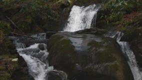 Husky Branch Falls Lower Cascade. In the Smokies stock footage