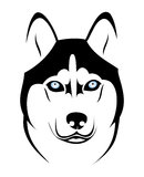 Husky dog. Vector illustration of husky dog Stock Image