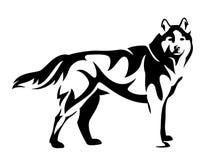 Husky dog black and white vector Royalty Free Stock Photo
