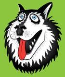 Husky dog cartoon portait design  illustration Stock Images