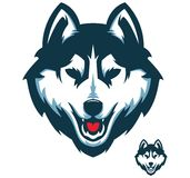 Husky Dog Head Vector Stockbilder