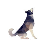 Husky Dog Illustration illustration stock