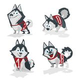 Husky dog with numbers 2018 isolated on white background. Husky dogs with numbers 2018 isolated on white background Stock Illustration