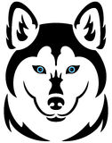 Husky dog tattoo Stock Photos